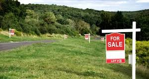 A piece of Land put up for sale in Kenya