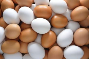 A collection of plastic eggs nabbed in Mumbai. (Image Courtesy)