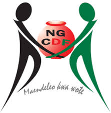 National Government CDF logo
