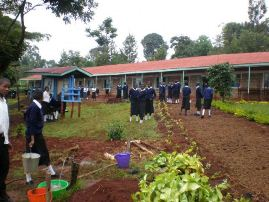 County Secondary Schools in Tharaka Nithi County; School KNEC Code, Type, Cluster, and Category