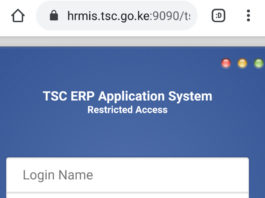 TSC Teacher Interns Vacancies application online at hrmis.tsc.go.ke