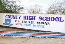 List of Sub County Secondary Schools in Garissa County; School KNEC Code, Type, Cluster, and Category.
