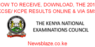 How to receive the 2019 KCSE results; the knec sms code, online results portal; https://www.knec-portal.ac.ke