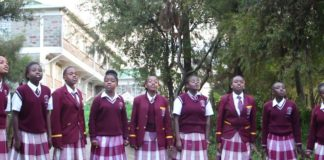 Sub County Schools,County Schools,Extra County Schools, Education, National Schools, Extra County School Fees, Education in Kenya, Education Ministry,NEMIS,Form one Selection,
