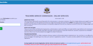 TSC Portal for filing 2019 assets, liabilities and income returns; https://tsconline.tsc.go.ke/site/index