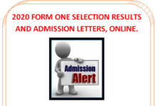 Form one selection 2020 results and admission letters; Extra County schools