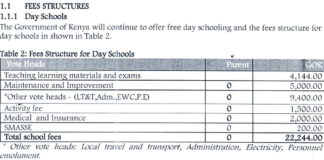 2020 School fees structure for all secondary schools in Kenya