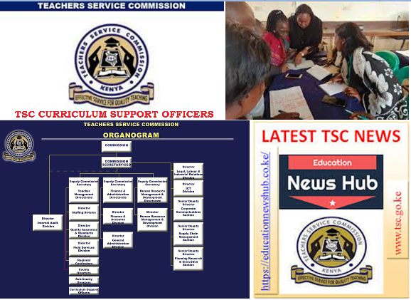 TSC Curriculum Support Officers.