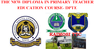Applications and requirements for the new Diploma in Primary Education (DPTE) Course.