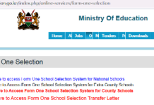Form one selection and online admission portal 2021.