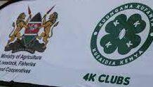 4K clubs in schools.